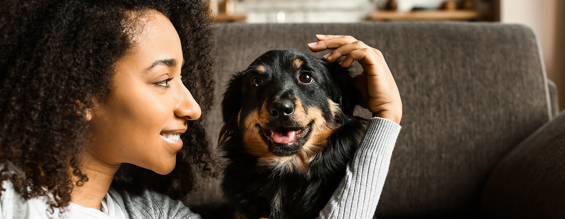 lifestyle image of a woman petting a dog indoors